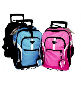 Large Backpack on Wheels Expandable